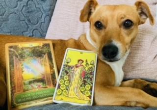 Weekly Free Tarot Reading